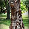 2014-06-16_IMG_1988_Largo Central Park,Largo,Fl _