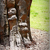 2014-06-16_IMG_1977_Largo Central Park,Largo,Fl _