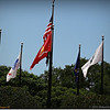 2014-06-16_IMG_1994_Largo Central Park,Largo,Fl _