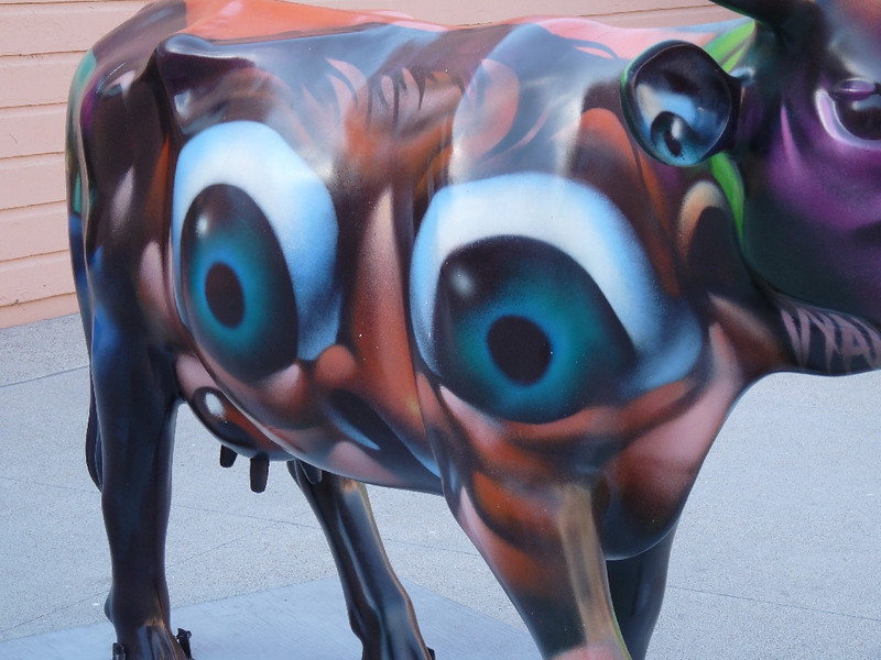 eyes everywhere on her you look (see the one on the udder and one in the ear)