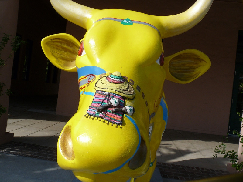 face-on the Metro cow