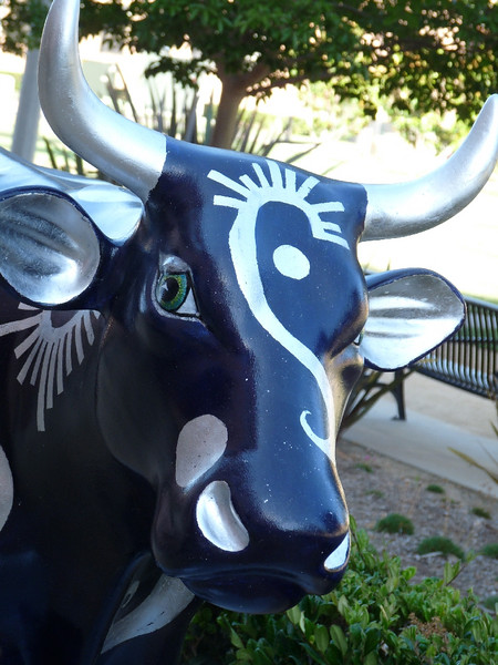 """Moo Indigo"" sponsored by Corky McMillan Companies.  <br /> <br /> She is a very dark blue, not black, with silver highlights."
