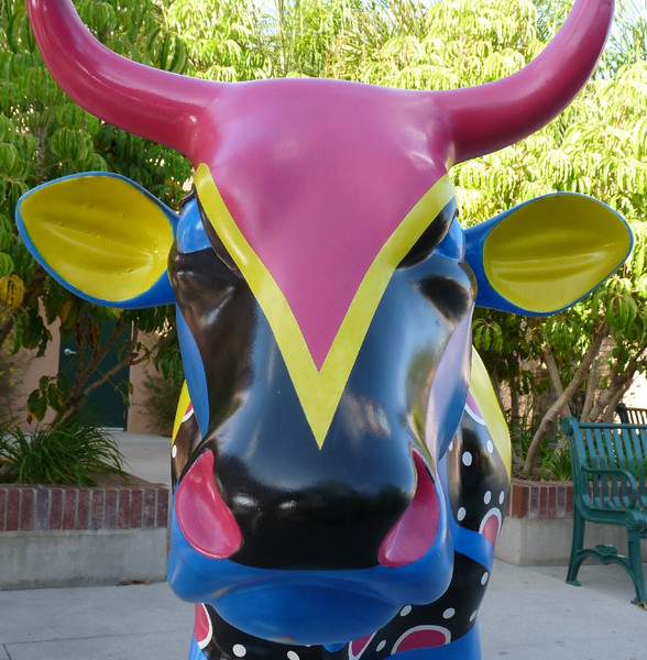 "What a great face!<br /> <br /> ""Milano Cow"""