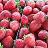 These strawberries look so good, not like those huge hollow monsters at Vons.