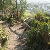 Another aloe path near Fort Stockton, on Presidio Hill