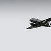 Daks over Duxford 05-06-19 0339