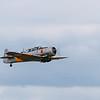 Daks over Duxford 05-06-19 0150