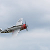 Daks over Duxford 05-06-19 0187