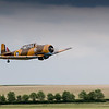 Daks over Duxford 05-06-19 0349