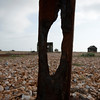 Dungeness 11-09-10   013