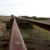 Dungeness 11-09-10   009