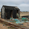 Dungeness 11-09-10   016