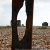 Dungeness 11-09-10   014