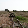 Dungeness 11-09-10   006