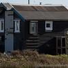 Dungeness Beach 22-02-14  008