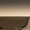 Dungeness Beach 22-02-14  017
