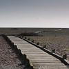 Dungeness Beach 22-02-14  015