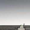 Dungeness Beach 22-02-14  019
