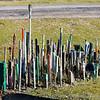 Dungeness Beach 22-02-14  012