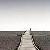 Dungeness Beach 22-02-14  018