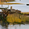 Heybridge Basin 08-01-13  005