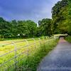 Lake District 01-07-17  0008
