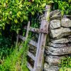 Lake District 01-07-17  0006
