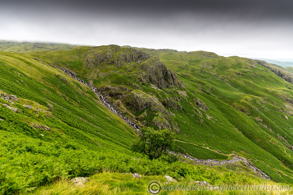 IMAGE: https://photos.smugmug.com/Out-n-About/Lake-District-2017/i-jQ5kSPc/0/792e5c57/XL/Lake%20District%2005-07-17%20%200057-XL.jpg