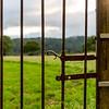 Lake District 01-07-17  0011