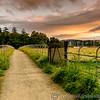 Lake District 01-07-17  0009