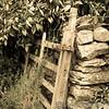 Lake District 01-07-17  0007