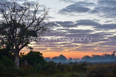 Sunrise on the Okavango Delta