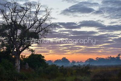 Sunrise on the Okavango Delta