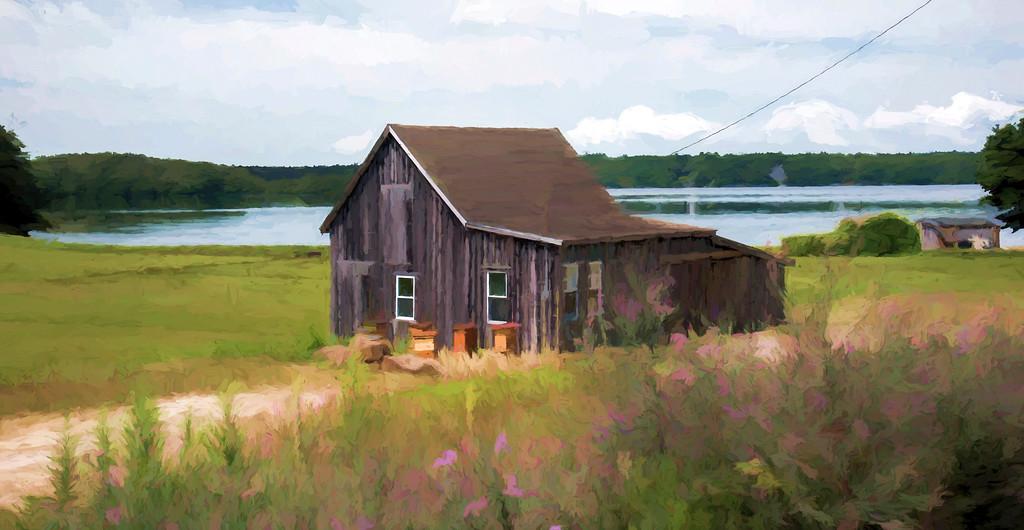 Cranberry Bog House