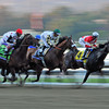 CLASSIC COLORS: Fort Larned leads the field first time by the wire of the Breeders' Cup Classic Nov. 3 at Santa Anita Park<br /> © 2012 Rick Samuels/The Blood-Horse