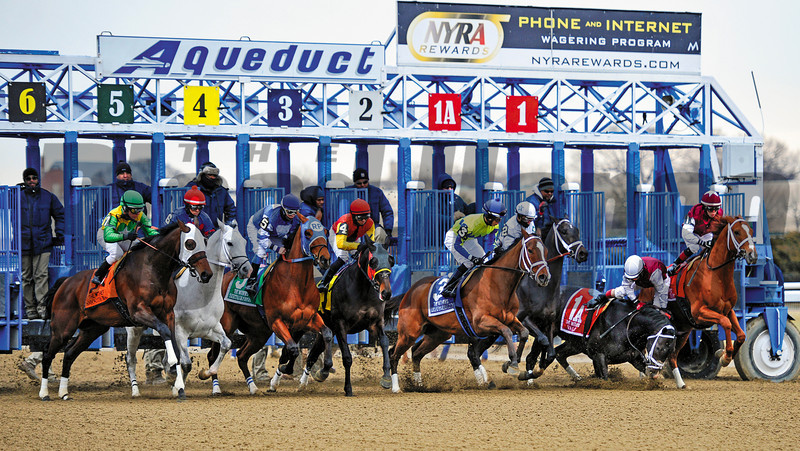 STAGGERED START:<br /> Darley Stable's Valid, with Junior Alvarado aboard, falls at the break of the Feb. 2 Withers Stakes (gr. III) at Aqueduct<br /> <br /> Photo by: Rick Samuels