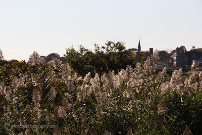 harkness_20151015_0024