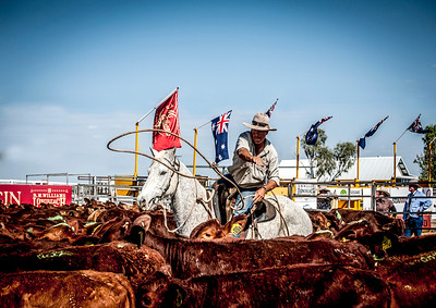 RM Williams stockmans challenge longreach