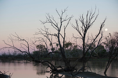 sun setting over the thomson river...during the drought 2015