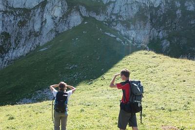 Steenbokken op Col de Planchamp