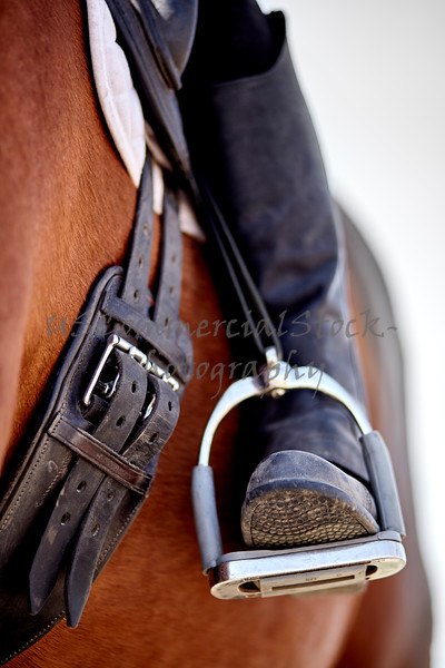 Dressage rider and horse closeup boot in stirrup