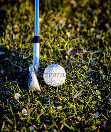 Golf Ball on Grass with Golf Club