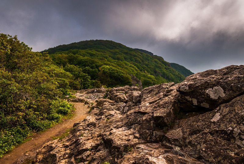 The Appalachian Trail, on Little Stony Man Cliffs in Shenandoah National Park, Virginia.