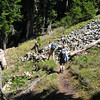 Hiking between Mt Margeret and Lk Lillian (east of Snoqualmie Pass, WA)