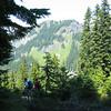 Mt Margeret trail