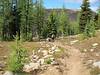 Larch Pass