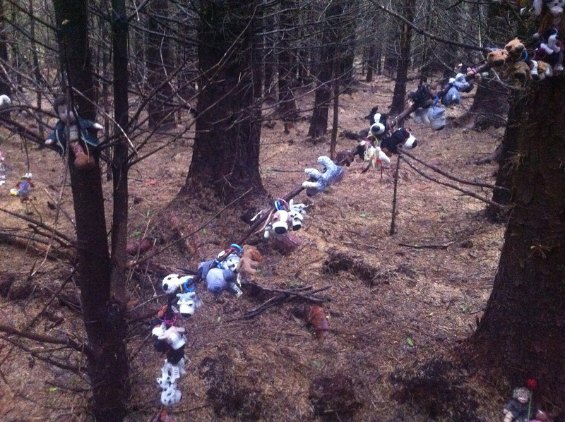 The Gairlochy Fairies - in the woods ~NN187855