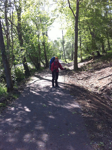 New trail from Potarch to the Slewdrum Forrest (starts in Potarch)