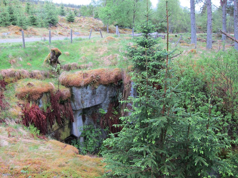 A mysterious bunker in the forest above Fersit