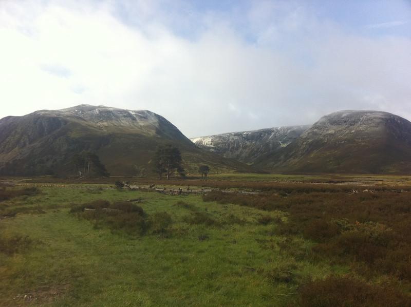 Views up Glen Feshie
